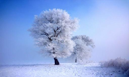 【雪遇轻户外】哈尔滨 亚布力 雪乡 雾凇岛 五天四晚精华版