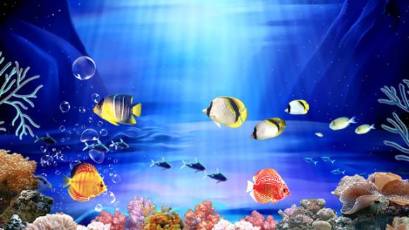 壁纸 海底 海底世界 海洋馆 水族馆 桌面 580_326