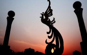 【张家港图片】此乃江南凤凰,非彼湘西凤凰。