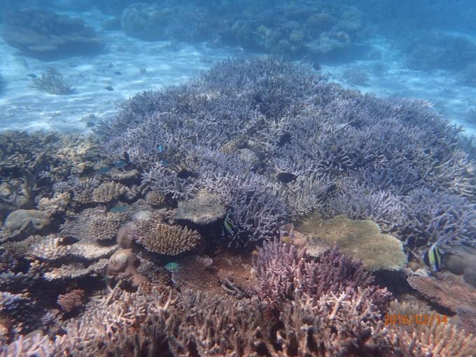 八大自然灾害具体是指哪八项 – 保险海