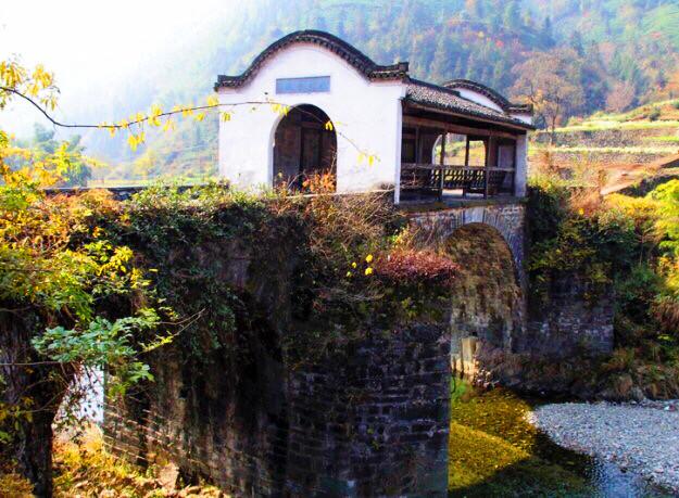三棵树廊桥所在的隆光村,历史文化底蕴深厚,拥有面积2亩的千年古树