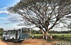 【努沃勒埃利耶图片】杨洋游走锡兰,27天花费3k,带你去看一个不一样的斯里兰卡(深度游,超多干货!)