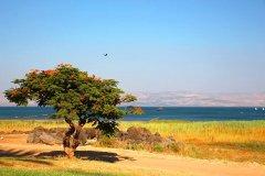 初次见面---约旦、以色列;日久生情---地中海沿岸(下篇)
