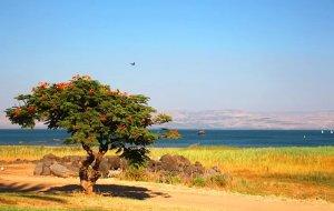 【海法图片】初次见面---约旦、以色列;日久生情---地中海沿岸(下篇)