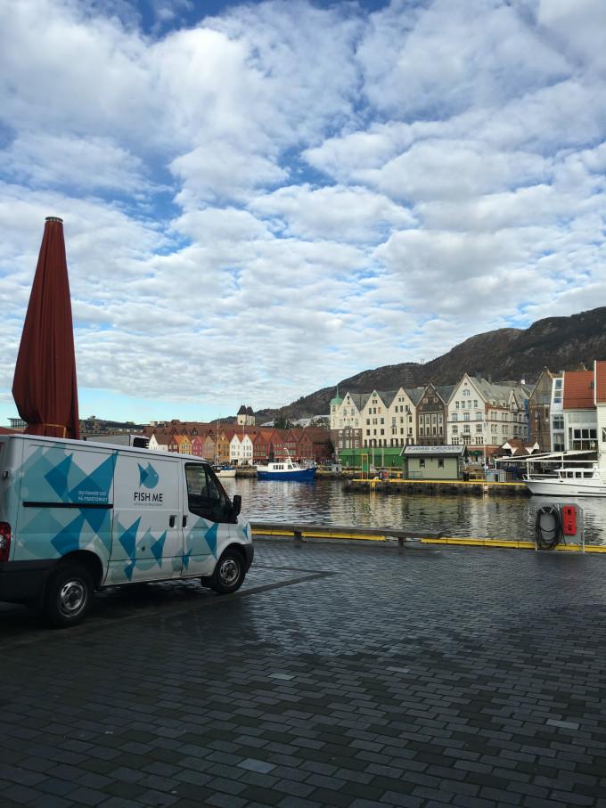 冰岛 挪威 9日