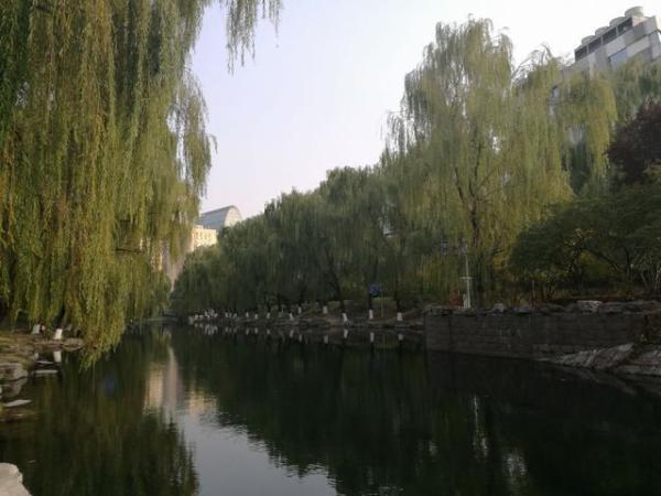 跑步细游遍北京第19天~去动物园无需再排大队买票了