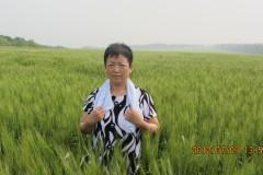 老妈的追寻记忆之旅——北安农场  游五大连池