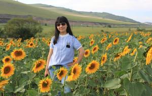 【海拉尔图片】8月深入呼伦贝尔草原游记记录片