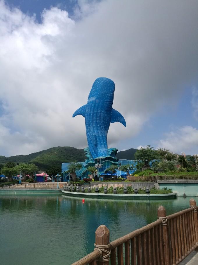 广州长隆野生动物园&珠海长隆海洋王国:动物园狂魔的大满足