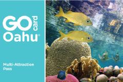 夏威夷欧胡岛旅游卡Go Oahu Card预订及攻略