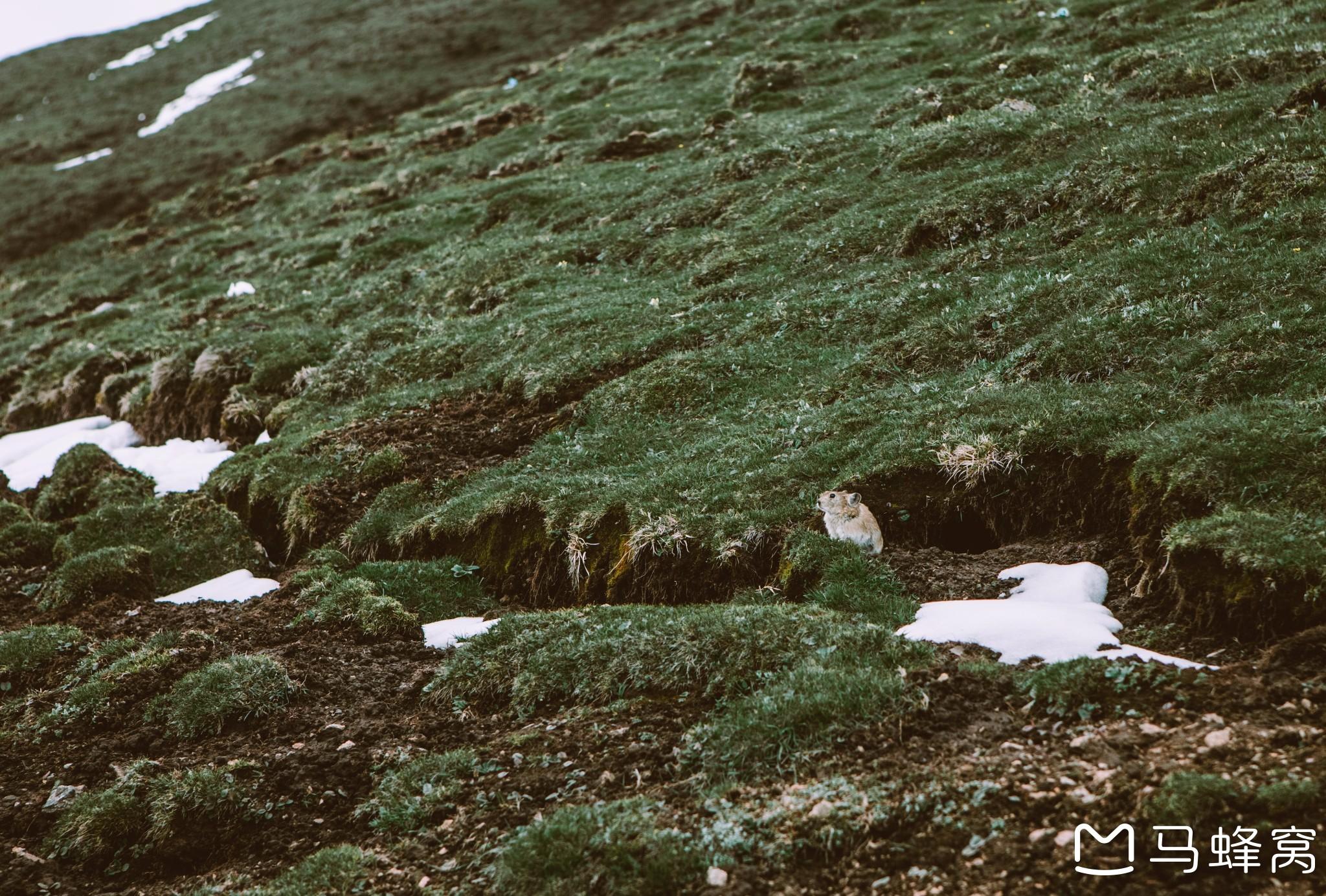 青海甘肃小环线之行|西北——让我望一眼你的荒芜与辽阔