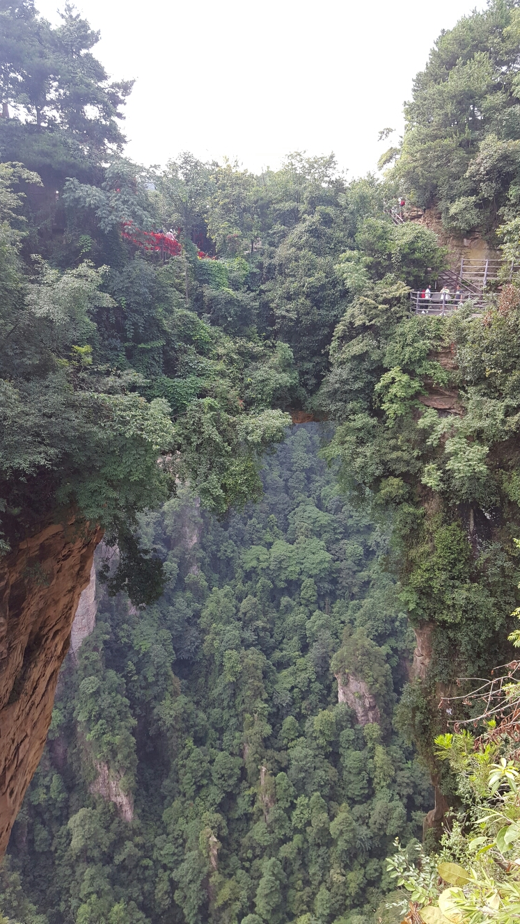 china zhangjiajie tour