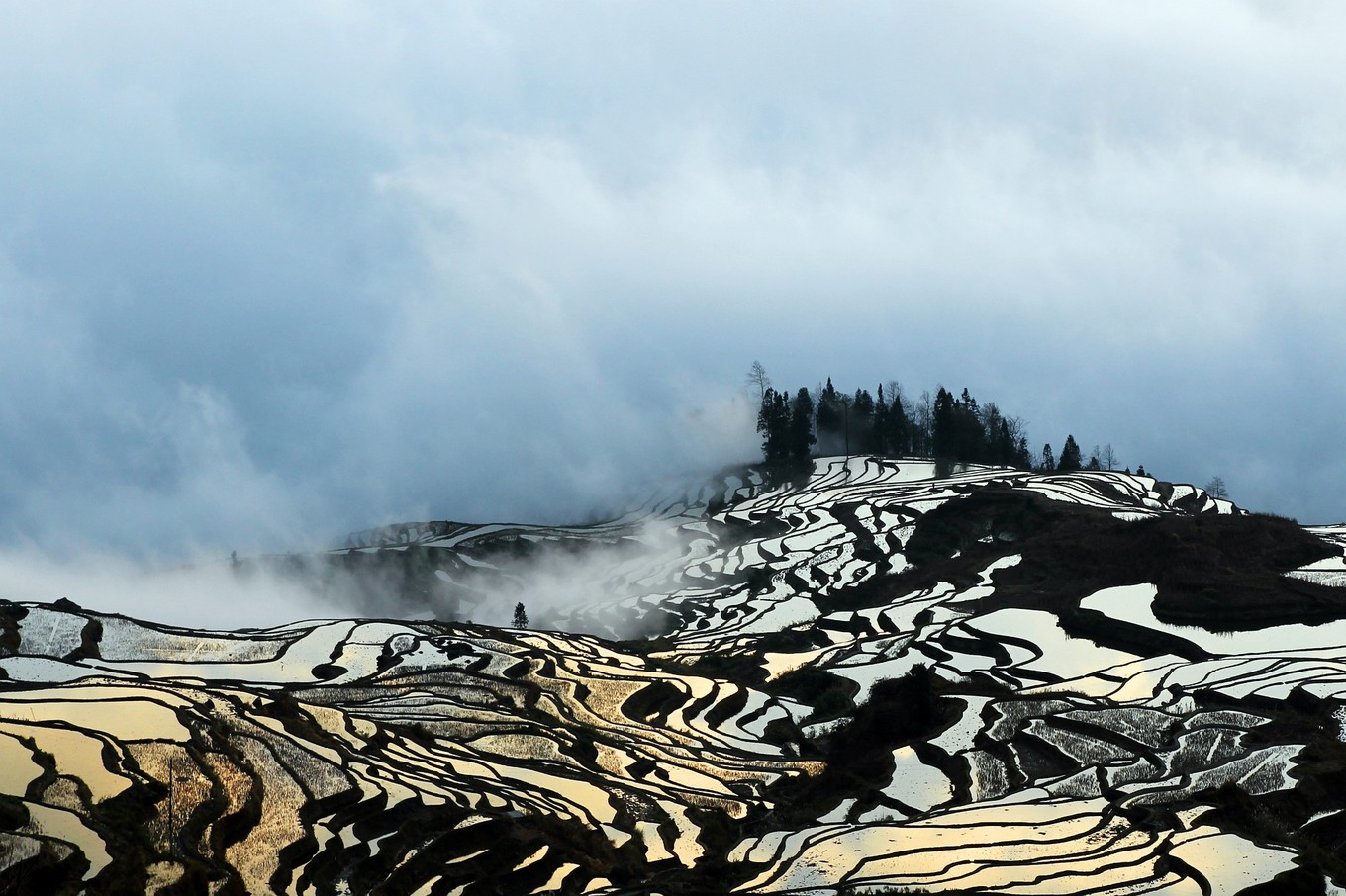 User submitted photo of Yuanyang Rice Paddies