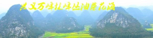 兴义万峰林峰丛油菜花海