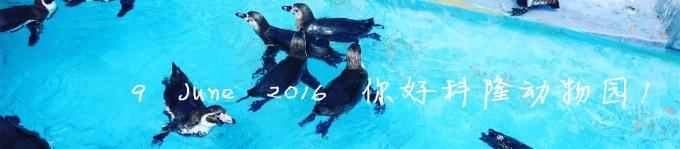 9 June 2016 你好科隆动物园!