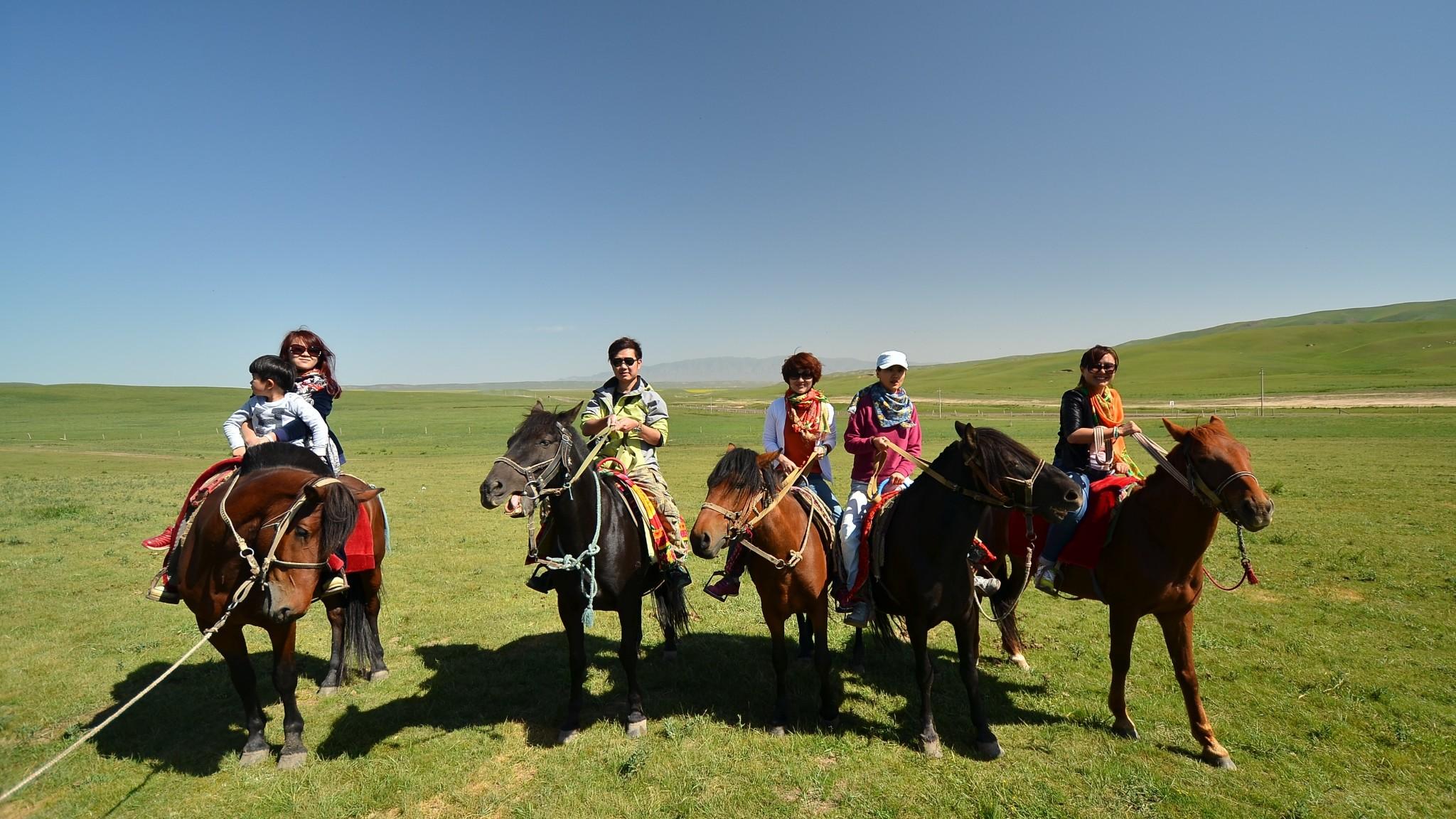 Gansu ZhangYe ShanDan Military horse farm
